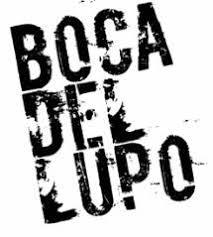 BocaLogo